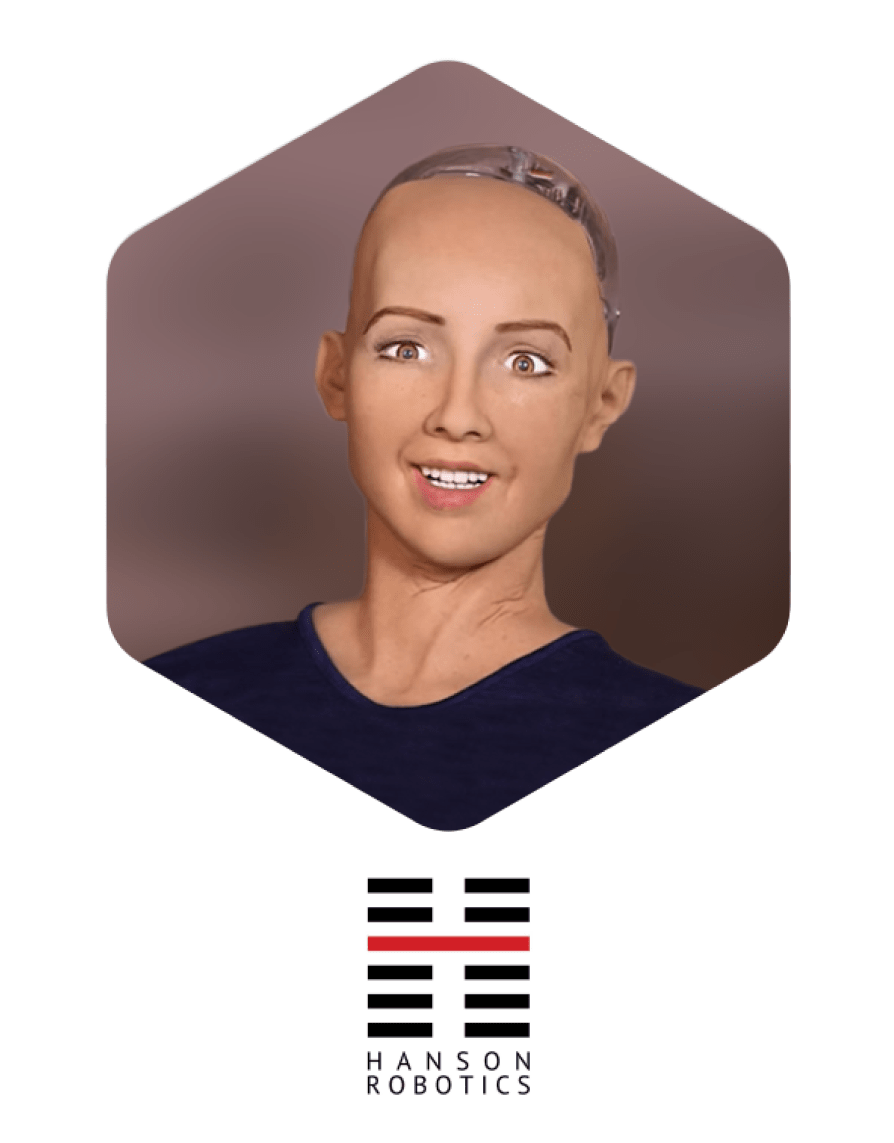 Sophia--The-First--Humanoid-Robot